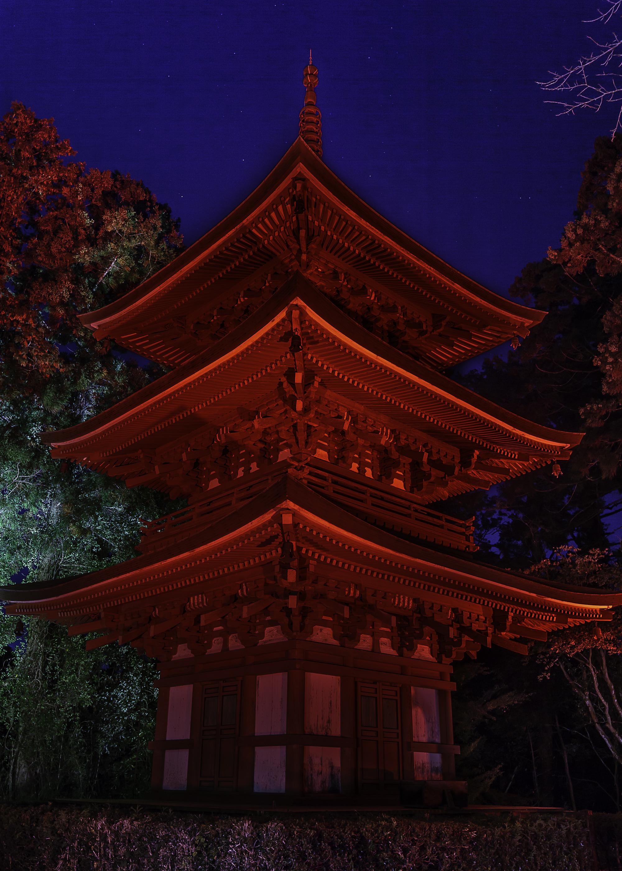 朝倉 稔詞様撮影_三重塔夜景