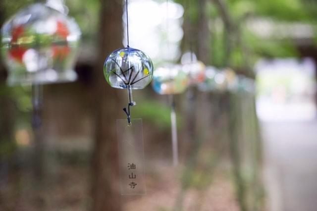 2019風鈴まつり_goroneko_bunyao様撮影_03
